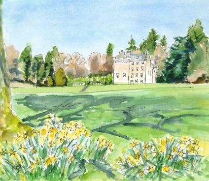 Sunshine & Daffodils at Culcreuch Castle-1