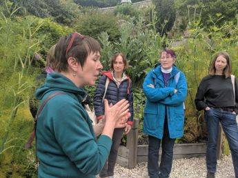 Herbal tour of Culross Palace Gardens