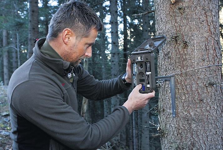 Fotofallen: Im Kanton Wallis für die Jagd verboten