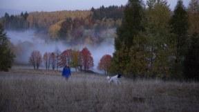 Doch zum Ausgleich sucht sie zusammen mit ihren geliebten Hunden immer wieder die Ruhe und Einsamkeit der umliegenden Wälder.
