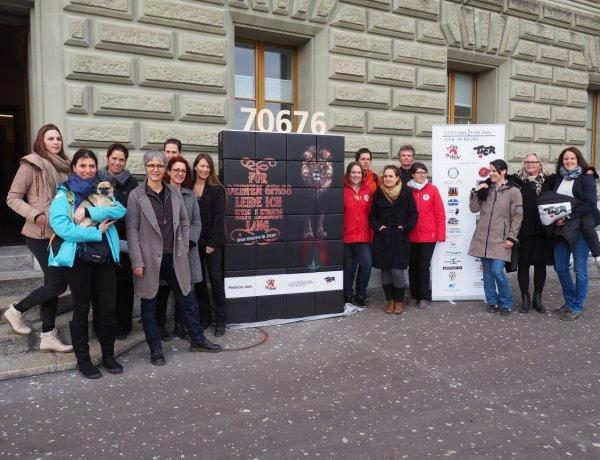 Bern: Tierschützer fordern Wildtier-Verbot im Zirkus