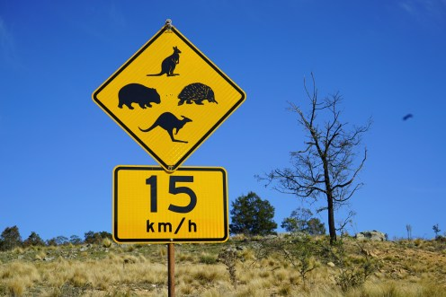 Australia road sign -®Hopping Pictures