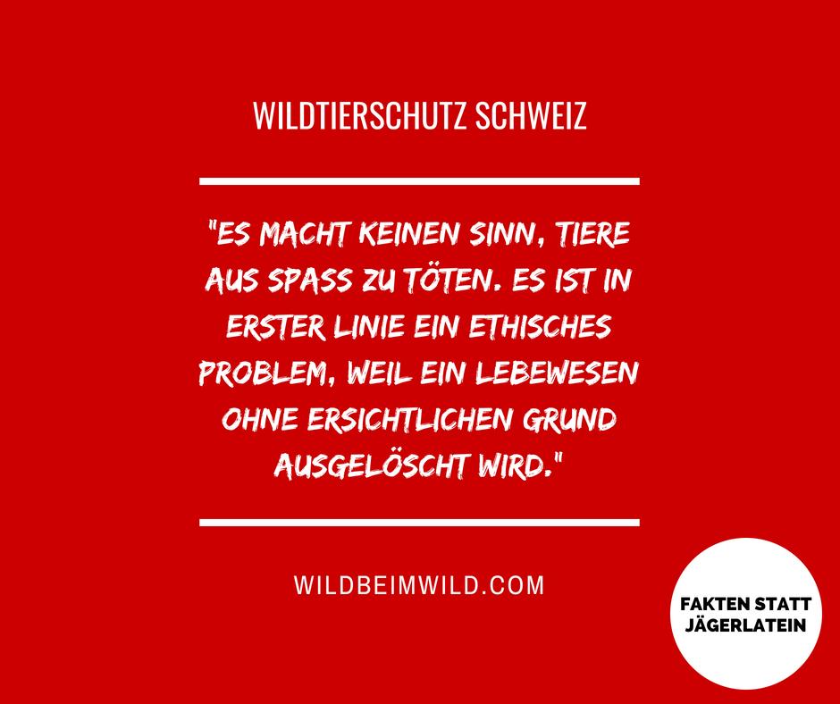 Wildtierschutz Schweiz