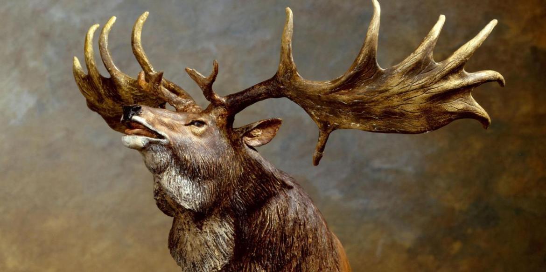 Riesen Hirsch