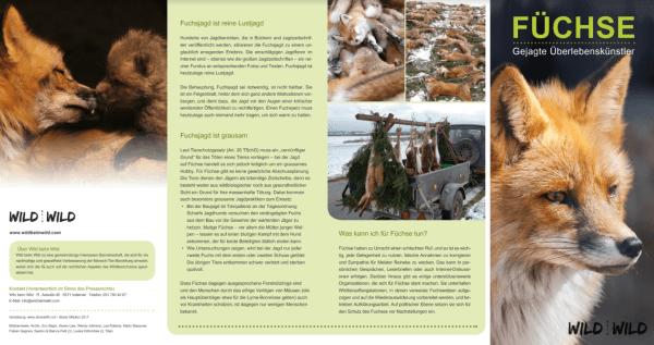 Füchse gejagte Überlebenskünstler (Version Schweiz) Back