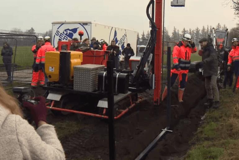 Grenzzaun Dänemark Wildschweine