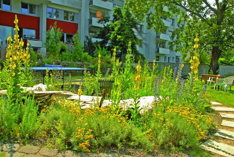 Auch in viel benutzten Gärten gibt es Platz für Natur. Diese für Mensch und Vögel wertvolle Umgebung lädt zum Verweilen ein. Auch das Tischtennisspiel macht vor schöner Kulisse viel mehr Spass.  Foto © Reinhard Witt