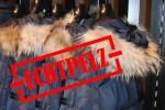 Zürcher Tierschutz ist empört Bund deckt Qualpelze