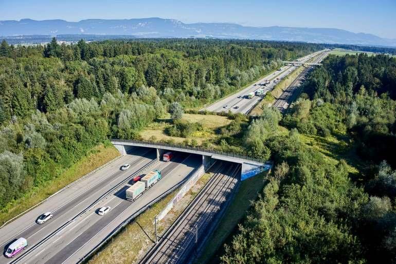 Neuenkirch Neue Wildtierbrücke über die A2