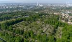 Friedhof Sturm vor dem Reh-Massaker