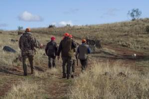Tierrechtler: Bundesgericht gibt Jagdkritiker Recht