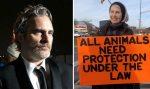 Joaquin Phoenix: Würdigt vor Schlachthaus getötete Tierschützerin