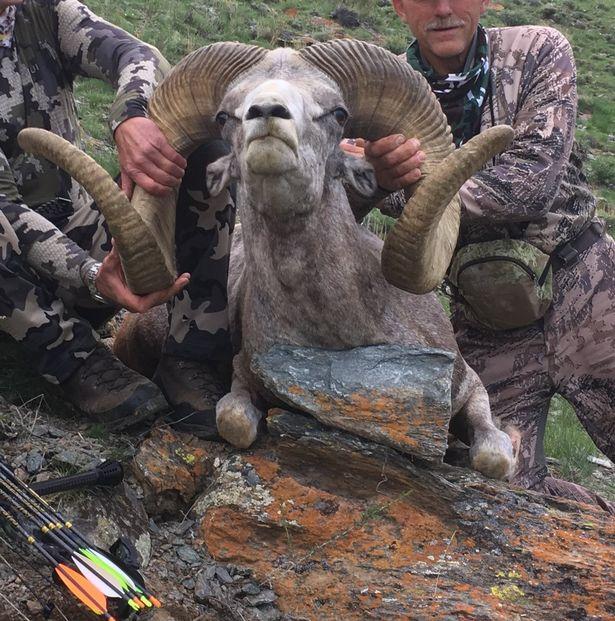 Walter Palmer: Cecil-Mörder geht wieder zur Jagd