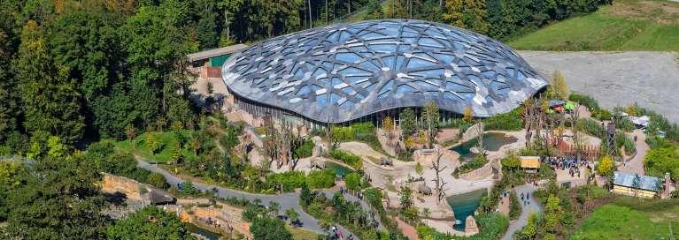 Zoo Zürich Weiterer Tod eines Elefantenbabys