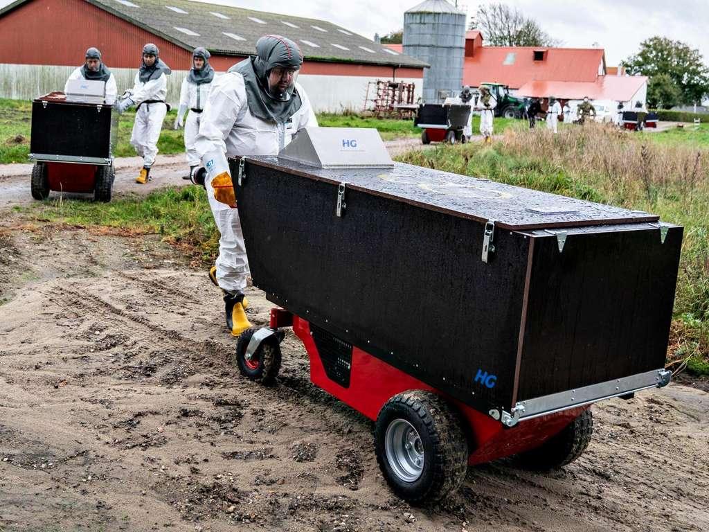 Schliessung aller Pelzfarmen in Europa