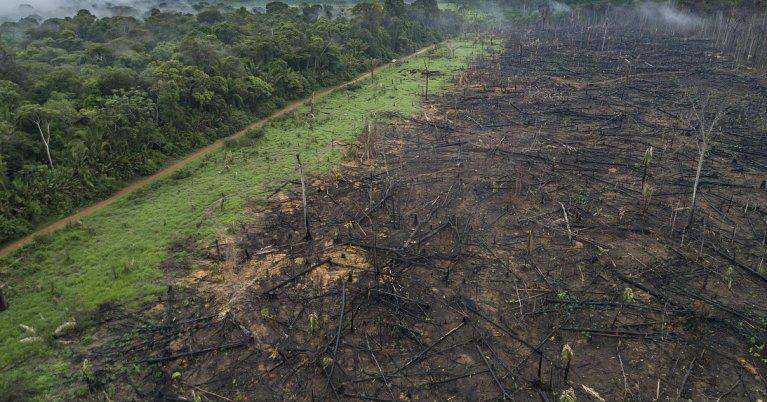 """Ende der """"Ära der Naturzerstörung"""""""