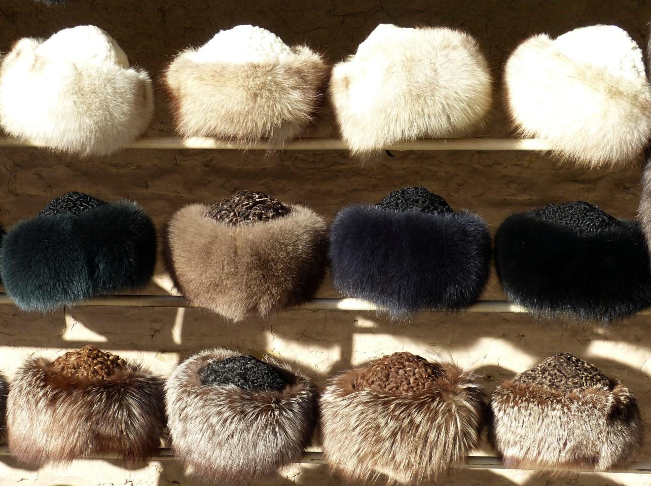 Tierrechtsgruppen fordern ein weltweites Verbot der Pelztierfarmen