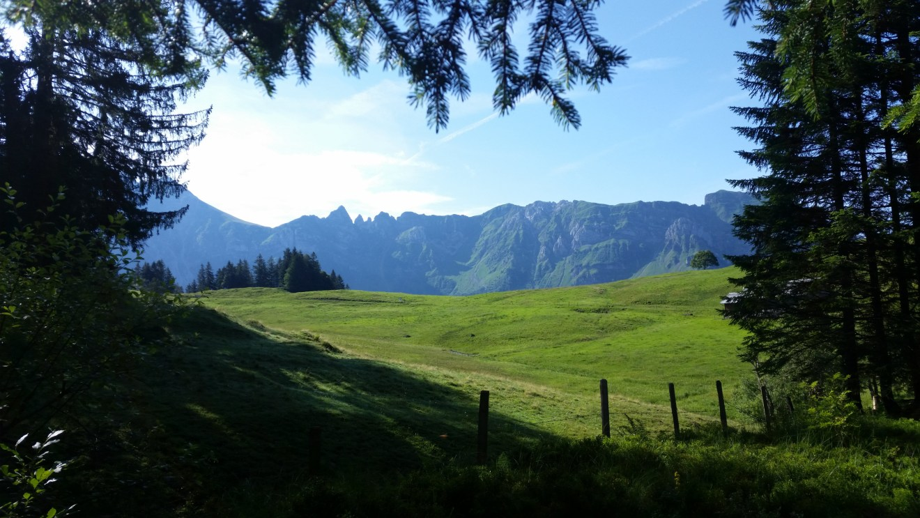Neuaufteilung der Jagdaufsicht Appenzell Innerhoden