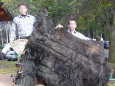 Am Ende war nur noch das Fell da: Wildhüter zeigen 2006 das Bärenfell, mit dem sie Palmer erwischt hatten.