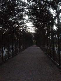 Privy garden in Schönbrunn