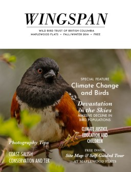 Wingspan 2019 Fall Winter - cover
