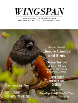 Wingspan 2019 Fall Winter - cover