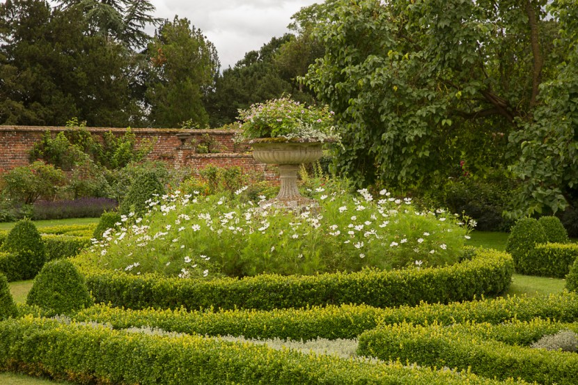Parterre Urn with Cosmos