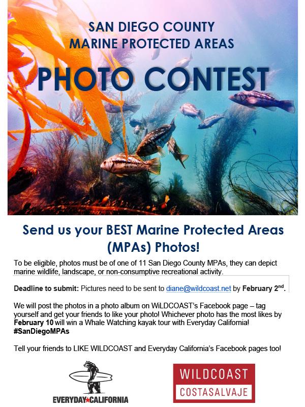Microsoft Word - Photo contest 2015.docx