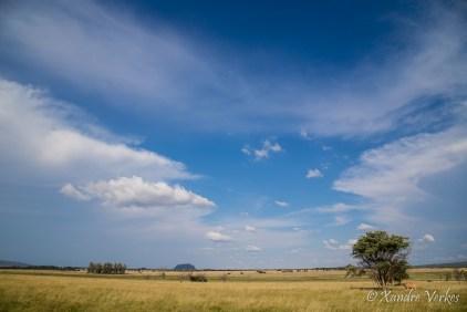 Xandre Verkes - Cattle Farm-14