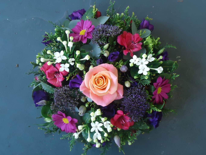 Posy Pad in Mixed Colours   Wild Daisy Florist