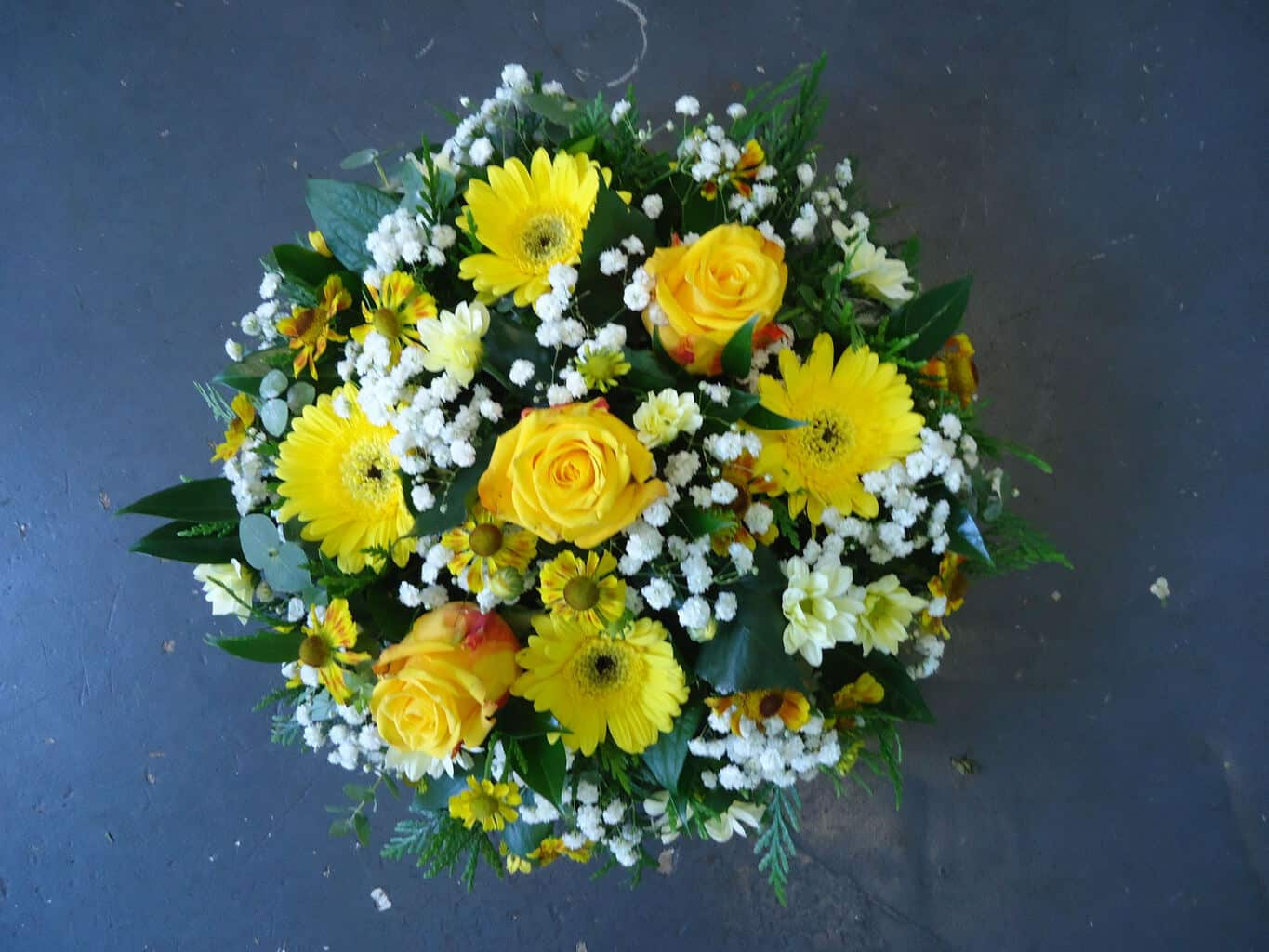 Posy Pad in Yellow and White   Wild Daisy Florist