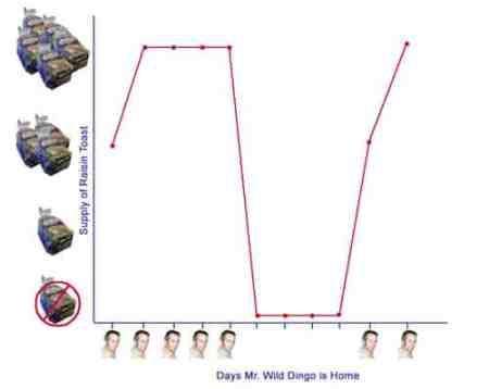 3-correlation