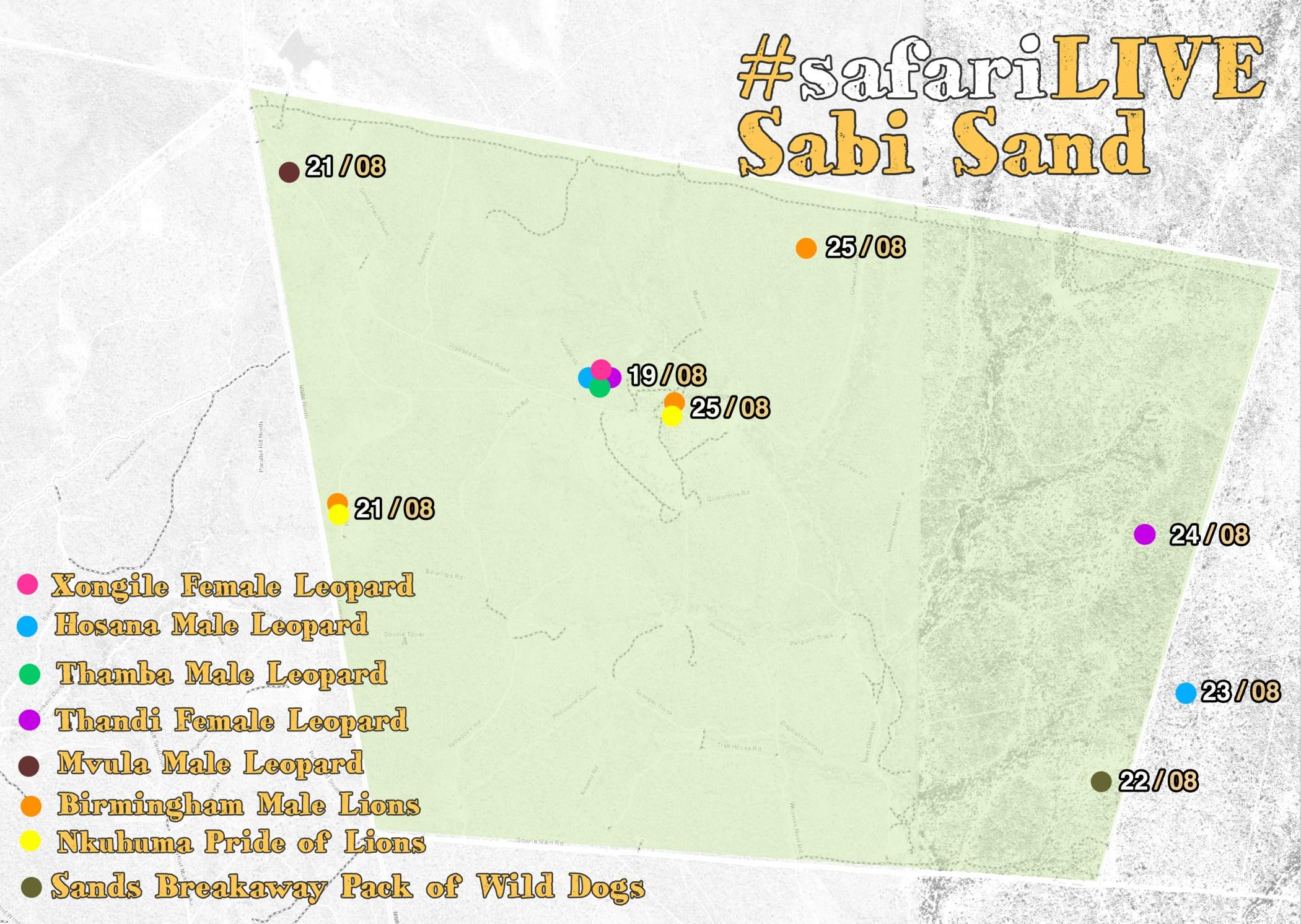 Sabi Sand cat location map