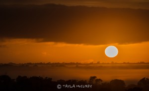 A sunrise only Africa can deliver