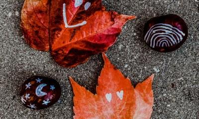 herfst knutselen kastanjes blaadjes tekenen