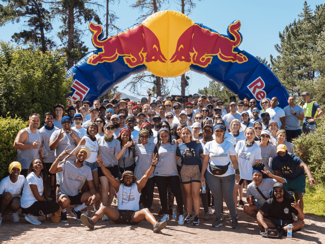 Red Bull Conference