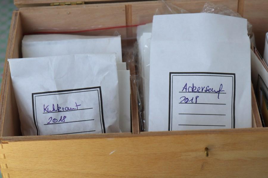 Ackersenf- und Kuhkrautsamen in Tütchen: Bienenfutter für das nächste Jahr, im März säe ich wieder aus.