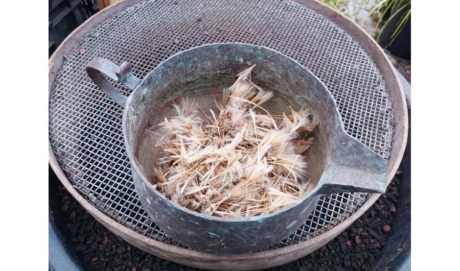 Sieb zum Reinigen von Saatgut
