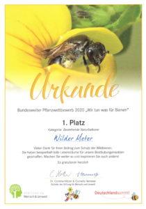 """Urkunde Pflanzwettbewerb """"Wir tun was für Bienen"""": 1 Platz in der Kategorie """"Bestehende Naturbalkone"""""""