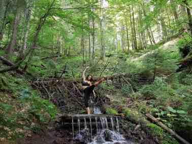 European Wilderness Diary-20339