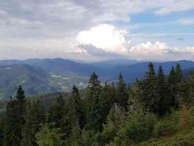 European Wilderness Diary-20357