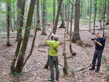 European Wilderness Diary-20361