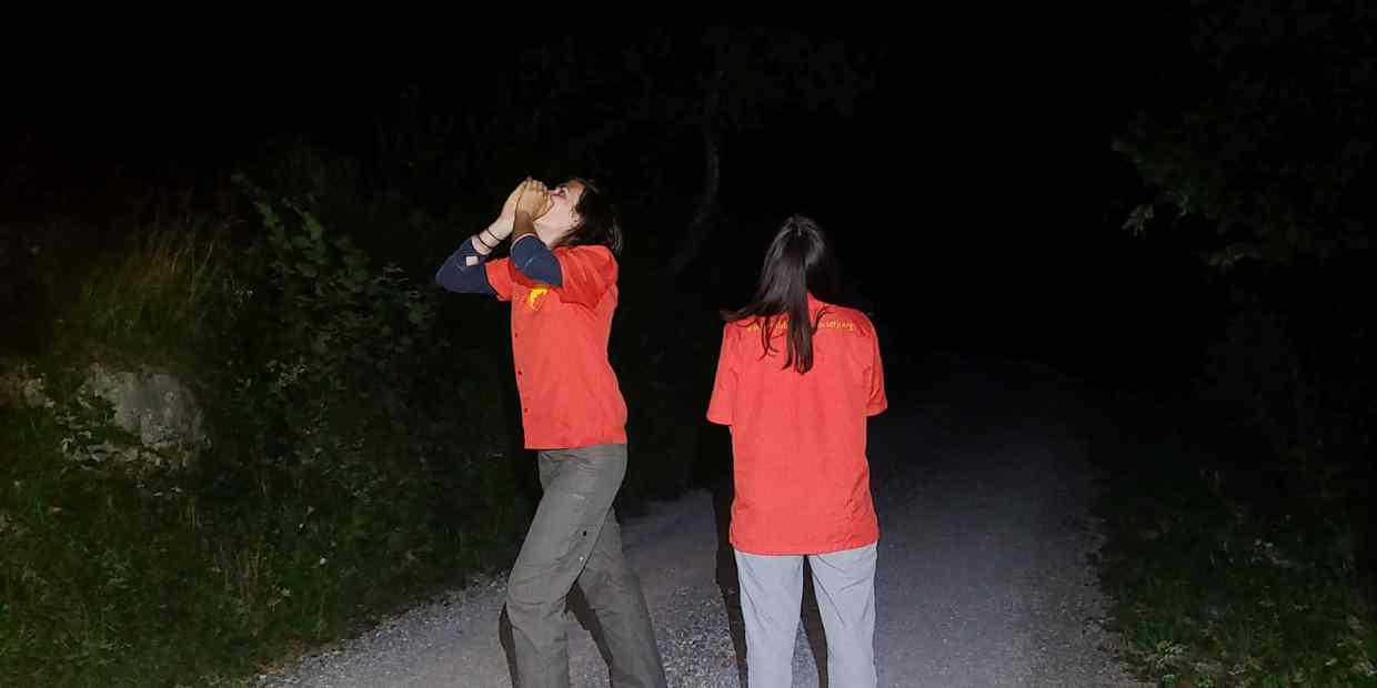 Slovenian Wolf Monitoring Howling-26712.jpg - © European Wilderness Society CC BY-NC-ND 4.0