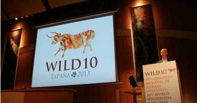 WILD10 Resolutions