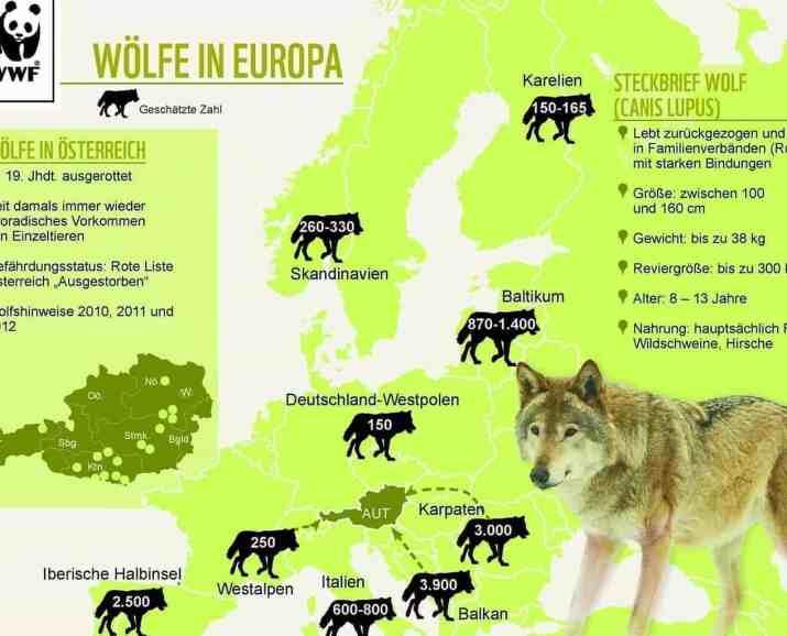 wolf_karte