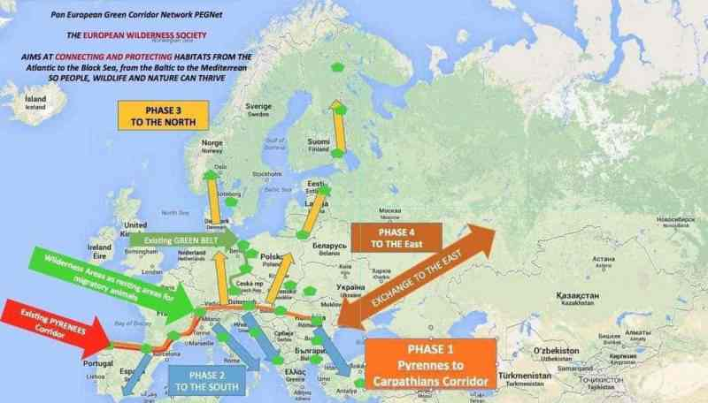 Pan European Green Corridor Network