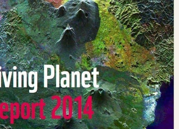 wwf-living-planet-report-2014-protected-areas-act-as-noahs-arc.jpg - © WWF All Rights Reserved
