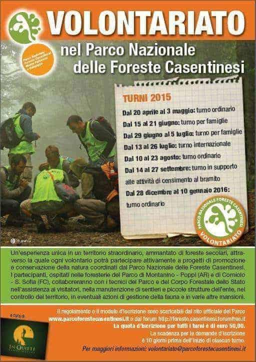 PNFC Volontariato 2015