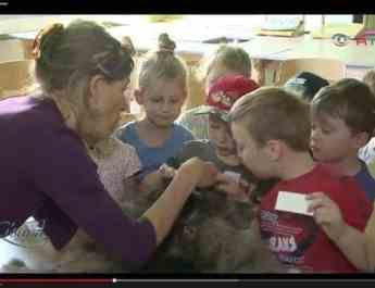 Kids! Be healthy – be like a wolf!