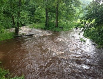 Managing floods and droughts with forests